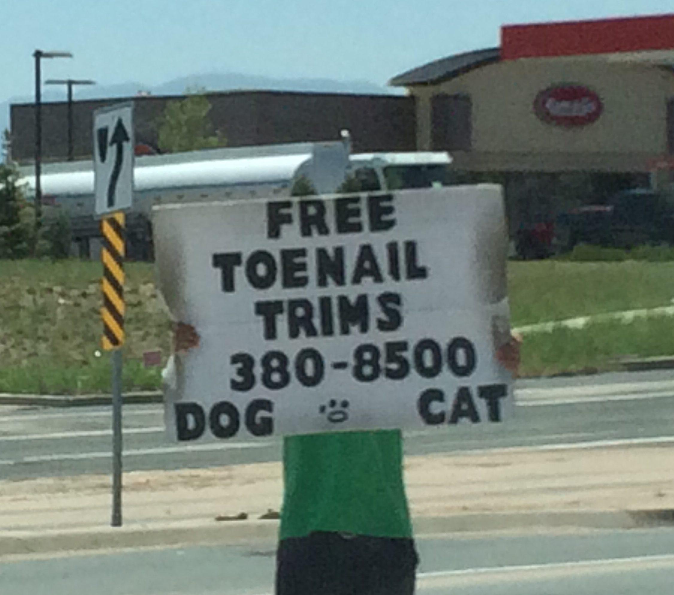 Free Toenail Trims Editorial Goof